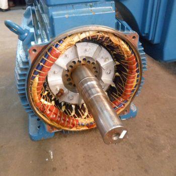 Manutenção motores elétricos weg